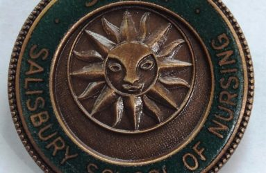 Metal badge with sun inscription inside green circle
