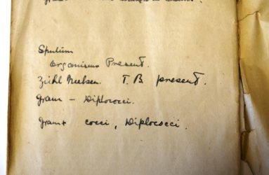 notes written by Dr Walker of blood culture slide viewed