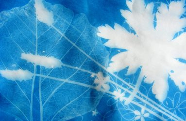 blue and white silhouette print of leaf shapes