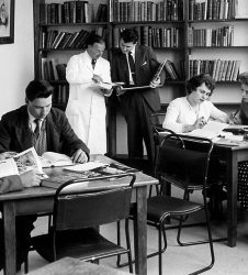 Doctors and nurses viewing books at desks in the library