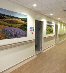 View of corridor artworks